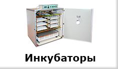 inkubatory